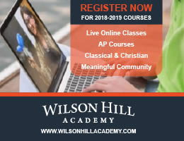 Wilson Hill Academy - live online classes