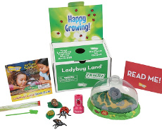 Insect Lore Kits